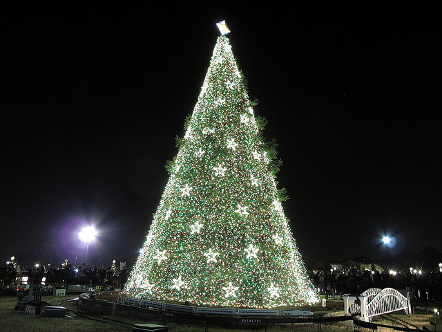 National Christmas Tree Lighting.Lottery For The National Christmas Tree Lighting Opens On