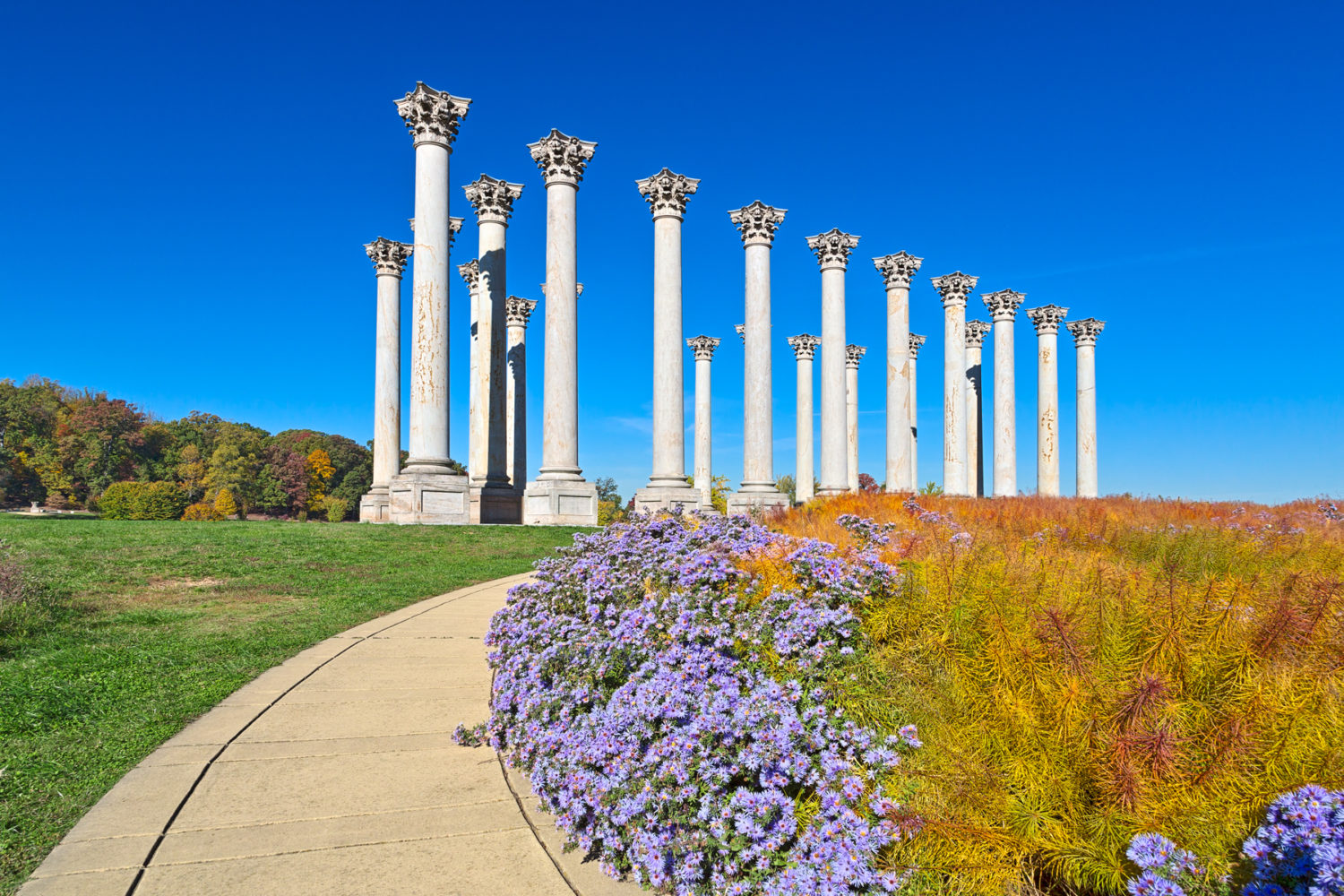 It s Too Beautiful Of A Gem To Keep Hidden   Movement To Reopen National  Arboretum s Original Gate Gains Steam 3bf54f917b04b