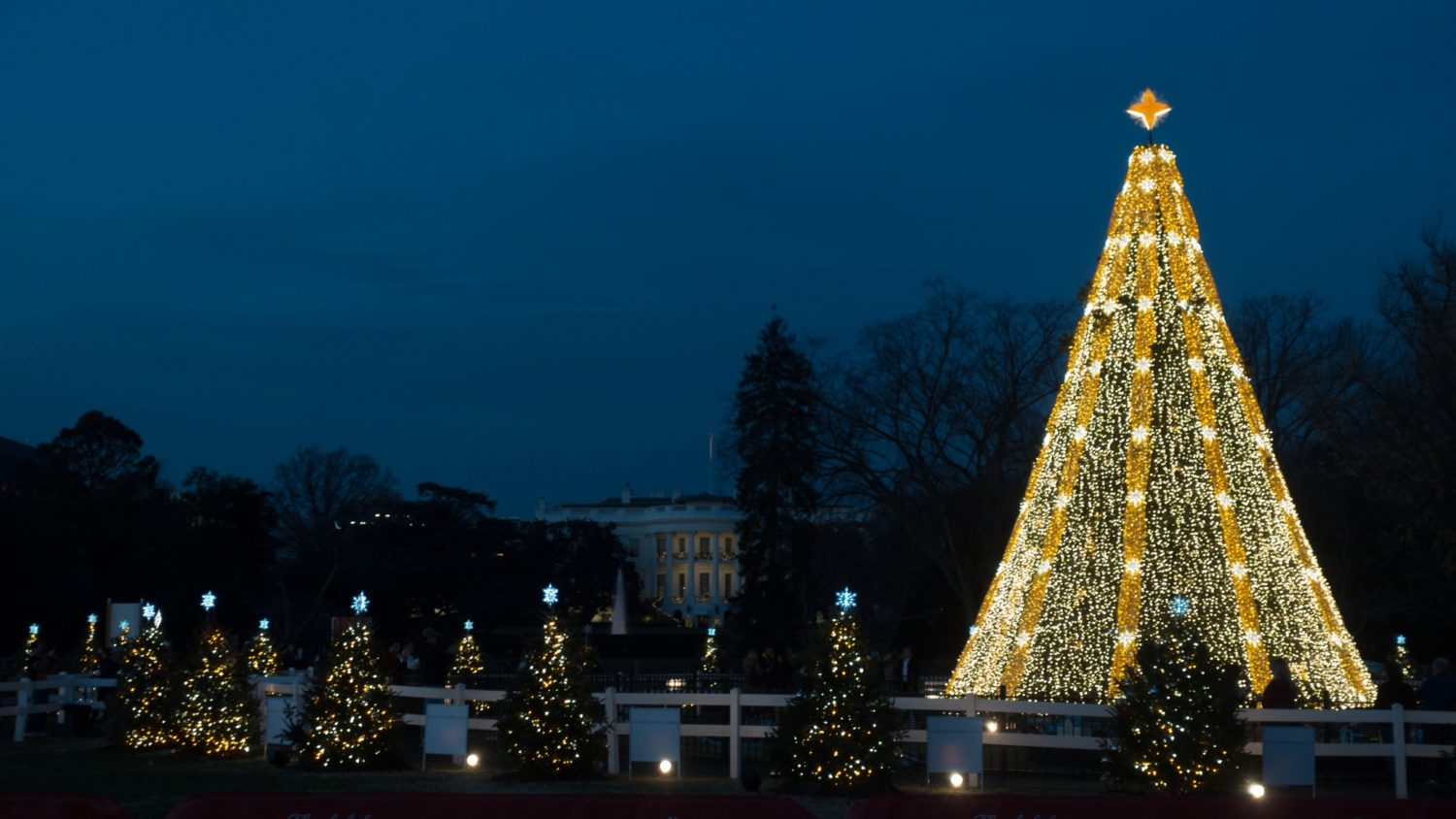 National Christmas Tree Lighting.Here Are The Street Closures For The National Christmas Tree