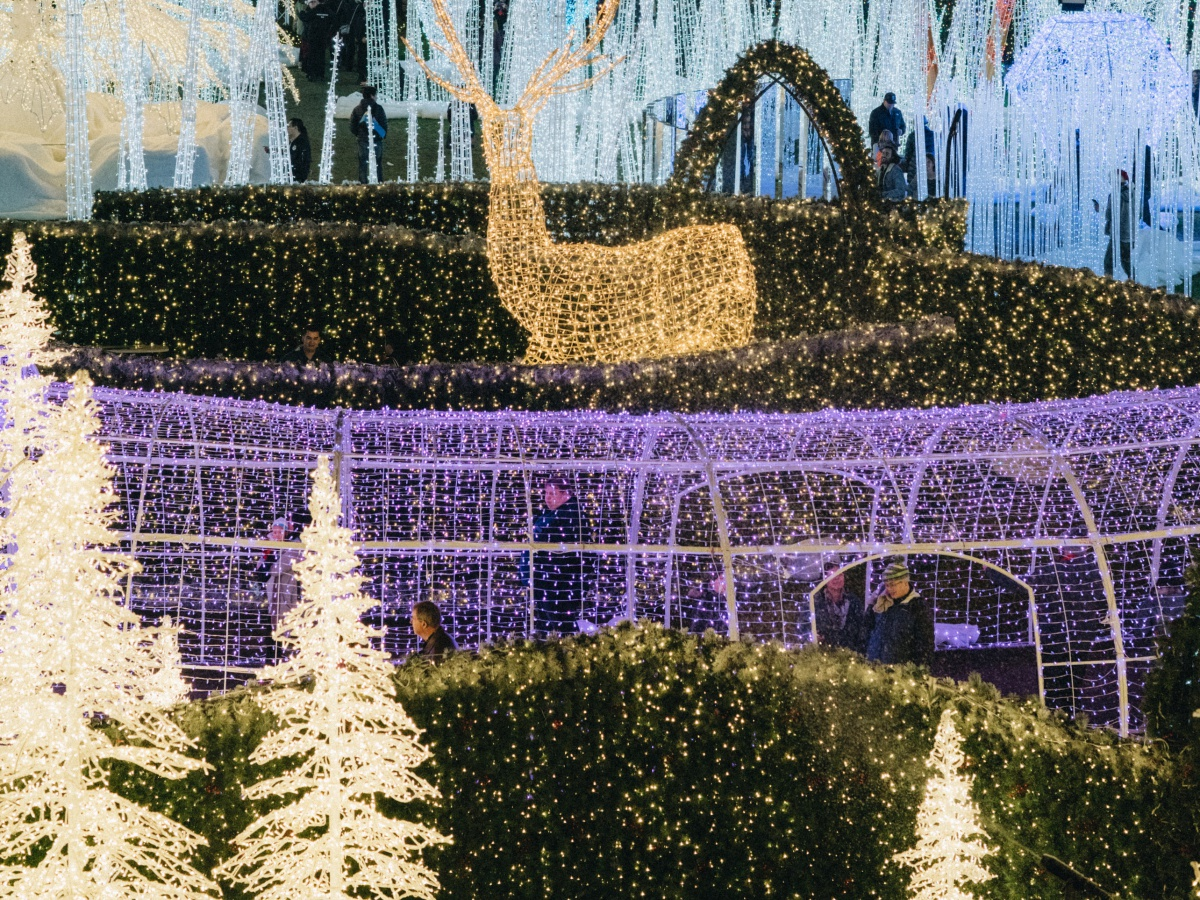 Enchant Christmas.Nats Park Will Turn Into A Glittering Christmas Maze This